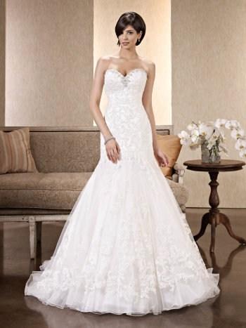 Alegria's Bride